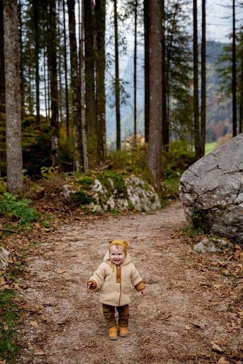Wald – Chrabel